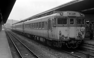 19011503